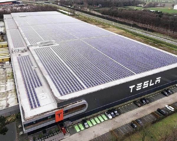 Musk desafía a las autoridades al anunciar que reanudará producción de Tesla en California