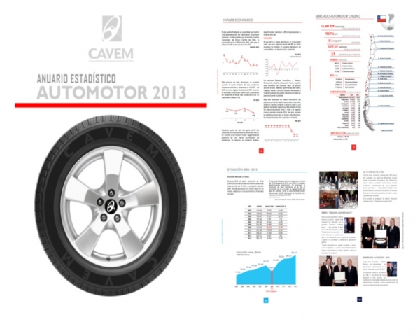 Anuario EstadÍstico Automotor 2013
